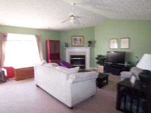 Living Room with Vaulted Ceiling and Gas Fireplace